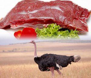 Thịt đà điểu tươi ngon, bổ dưỡng